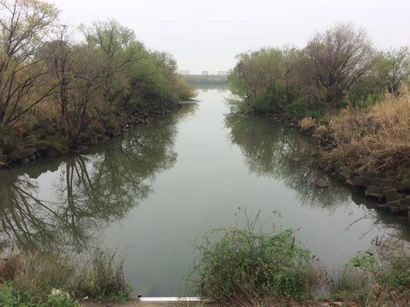 オカムラワンド水路