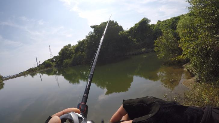 前島ワンドバス釣り