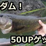 【2019年】一庫ダムでバス釣り!おかっぱりポイントを徹底解説!