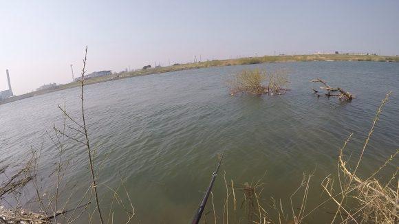 淀川の本流側