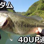 合川ダムバス釣り