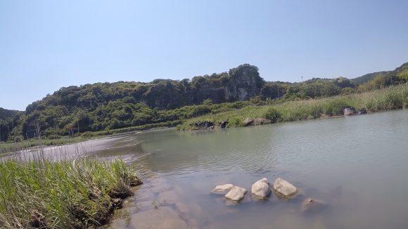 和歌山の富田川でバス釣り