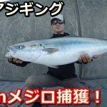 小潮の釣りは大型青物が釣れやすい?小潮で爆釣させる3つのポイント!