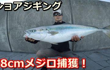 小潮の釣りで青物
