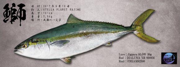 デジタル魚拓のブリカラー