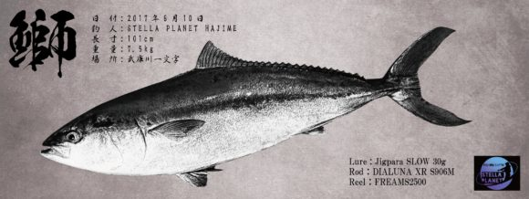 ブリの魚拓