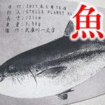 デジタル魚拓なら安いRe:fishがおすすめ!釣った巨大ブリで魚拓を作ってみた!