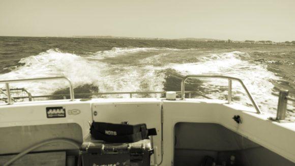 船酔い釣り