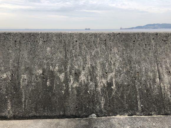 タルイチの堤防