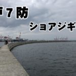 神戸7防でショアジギング!青物・タチウオのポイント解説