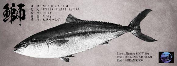 ブリのデジタル魚拓