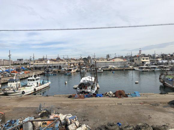 明石新波止の漁港の中