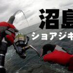 【淡路島】沼島でショアジギング!青物(ブリ)の釣りポイント徹底解説