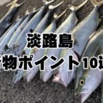 【2021年】本当は教えたくない淡路島の青物釣りポイント10選まとめ